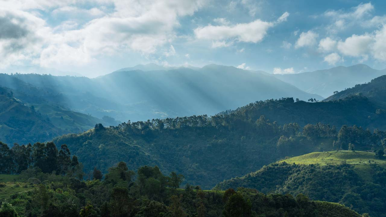 colombia protege su biodiversidad con permacultura